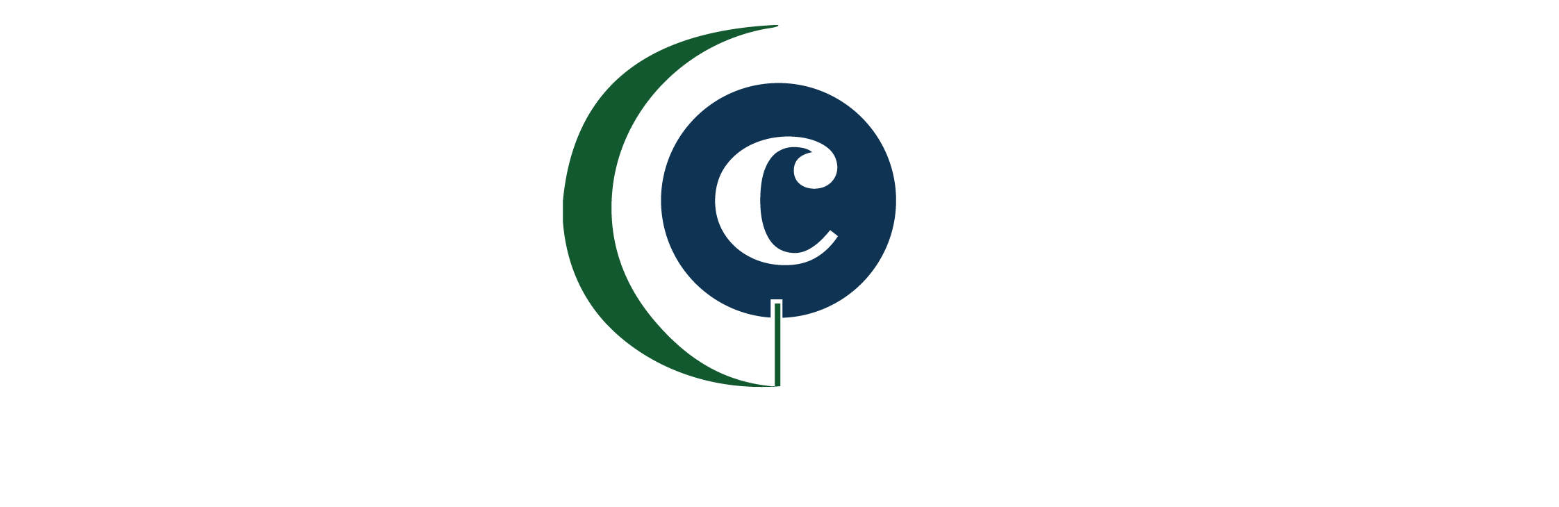 Civic Catalyst Construction Group